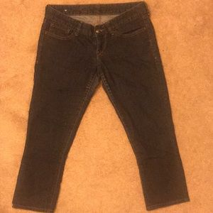 Express denim capris